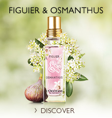 Fig & Osmanthus